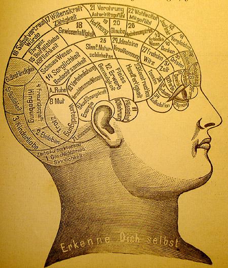 Что такое сознание — просто о сложном