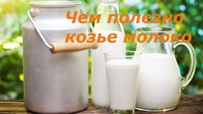 Польза топленого молока для организма: обзор состава, свойства, характеристики и правила употребления (95 фото)