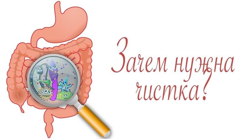 Шлаки в организме — википедия. что такое шлаки в организме