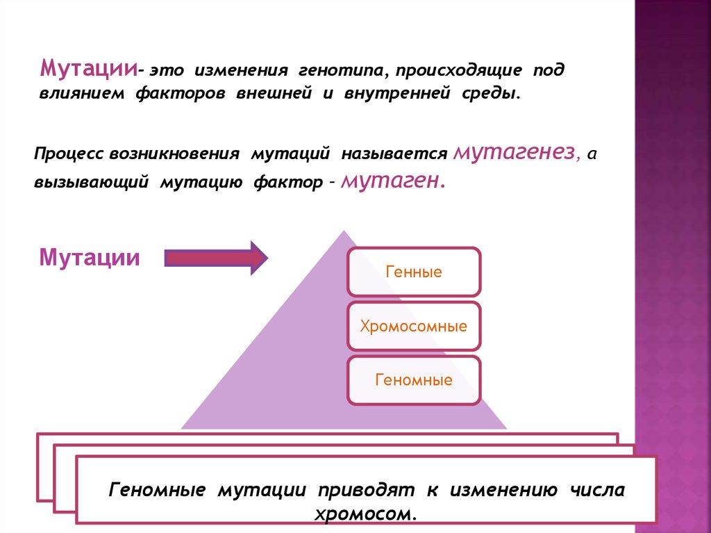 Особенности мутационной изменчивости. виды мутаций