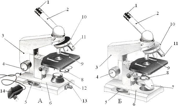 Виды микроскопов, основные характеристики и назначение :: syl.ru