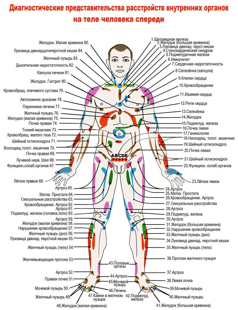 Прыщи на лице по зонам: причины возникновения и особенности лечения