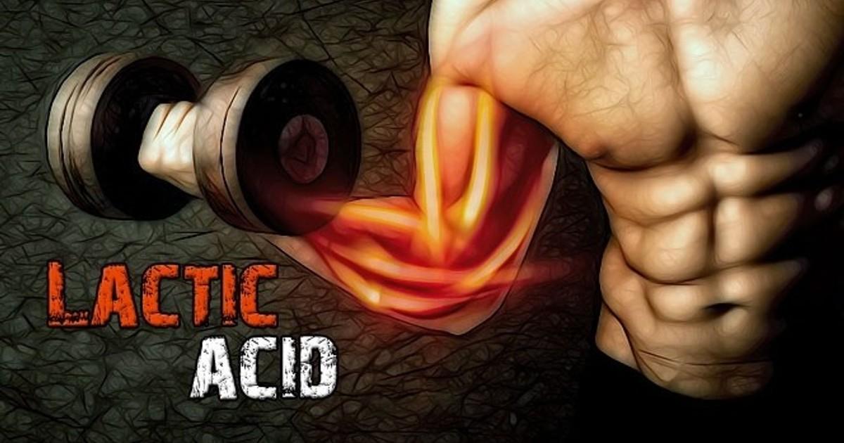 Молочная кислота в мышцах: что такое, как вывести, что такое лактат