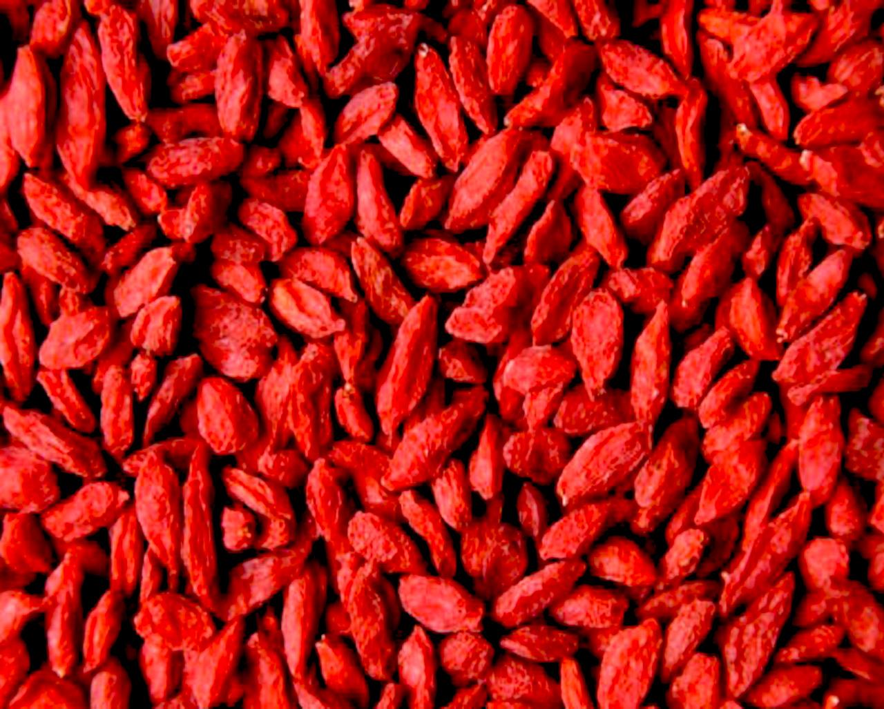 Годжи – целебная ягода. дереза. полезные свойства. уход, выращивание, размножение. фото — ботаничка.ru
