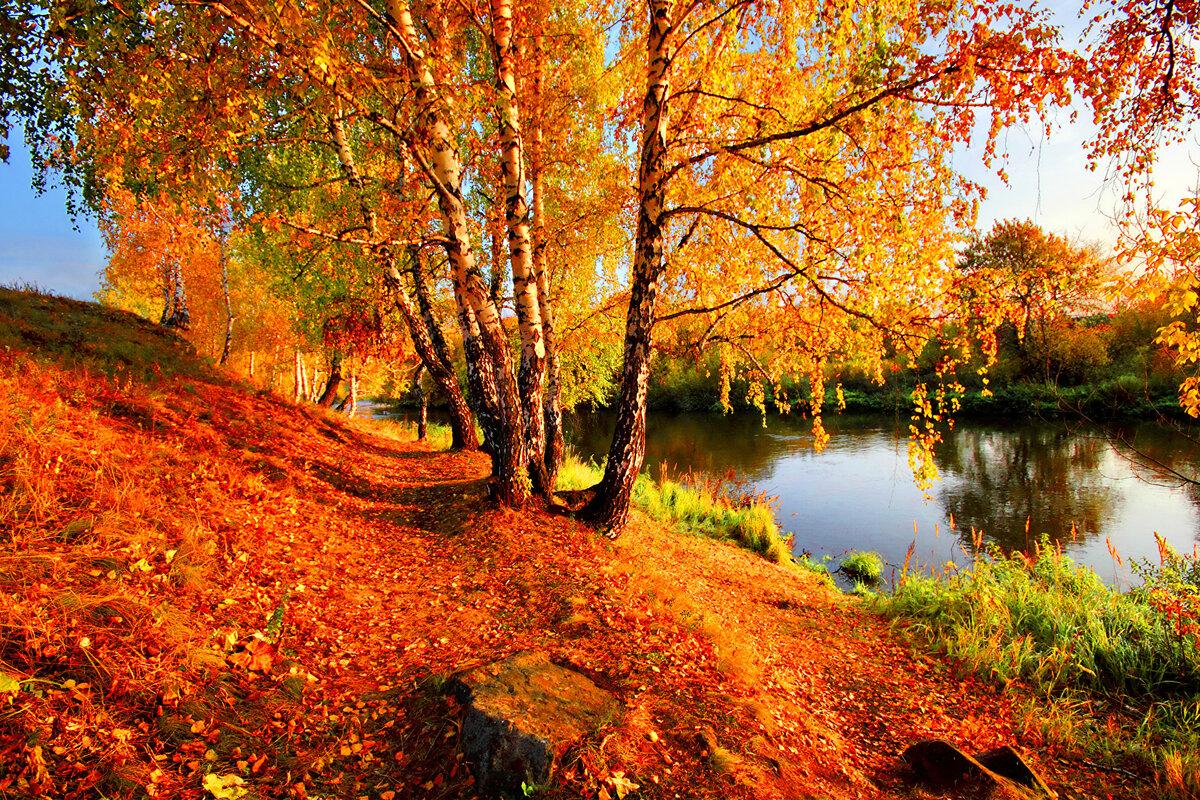 Что такое осень — википедия с видео // wiki 2