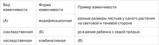Модификационная изменчивость свойства, примеры и значение
