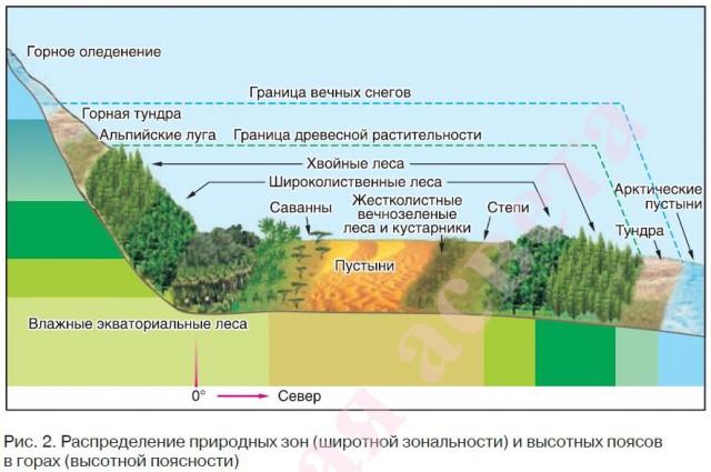 Закономерности географической оболочки и основные свойства 7 класс