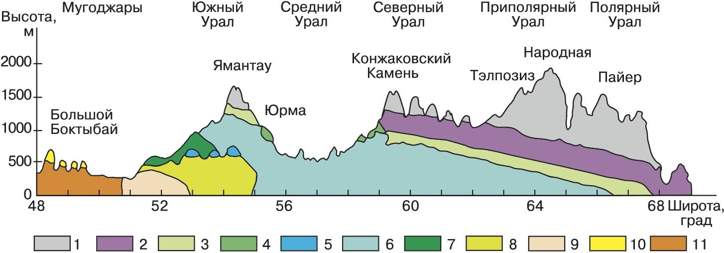 Высотная зональность википедия