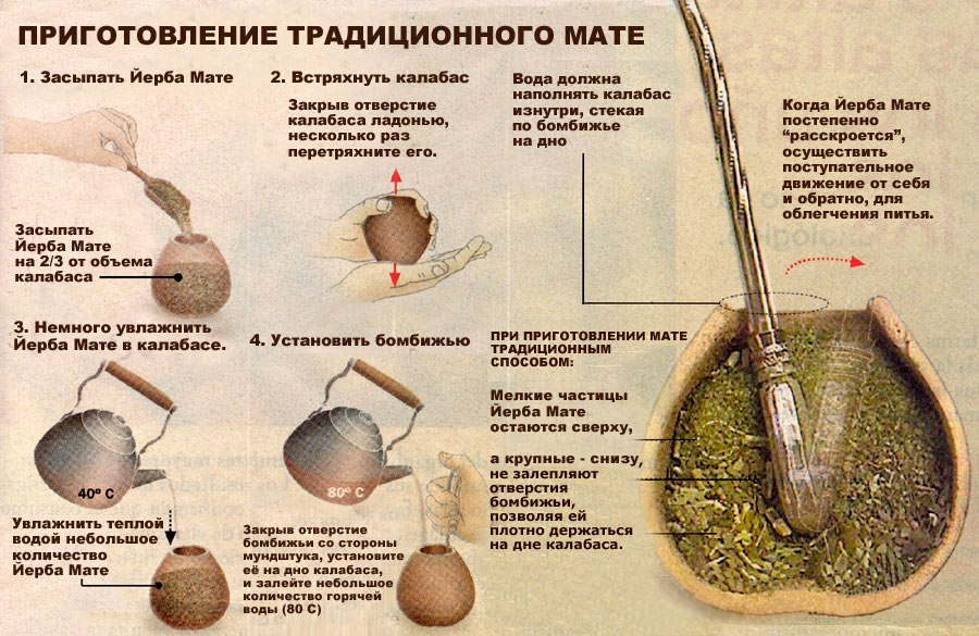 Чай мате: полезные свойства и советы экспертов