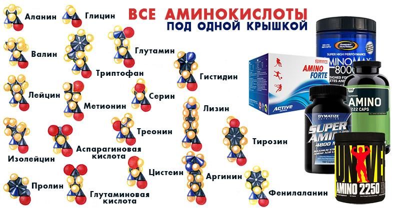 Что такое аминокислоты, таблица, формулы, свойства, применение