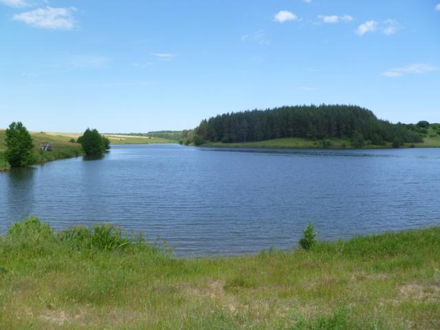 Зарыбление прудов, водоемов