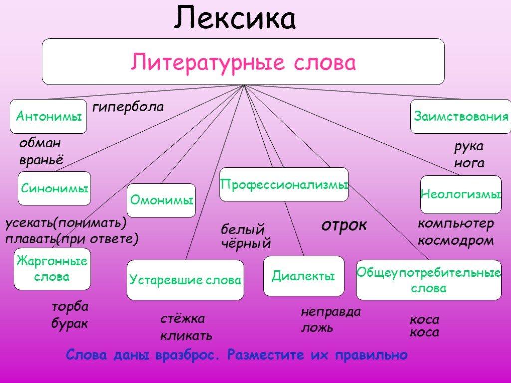 Лексика: характеристика, разновидности, понятия