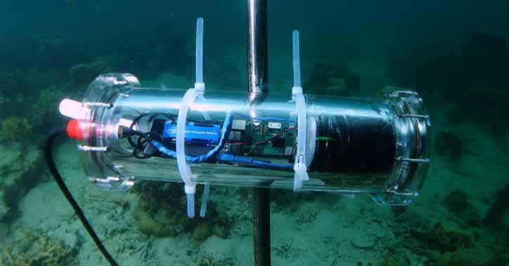 Искусственный риф - artificial reef - qwe.wiki