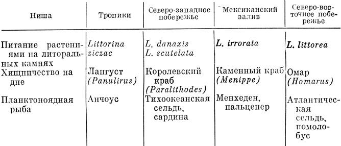 Что такое экологическая ниша: пример. описание экологической ниши организма: примеры