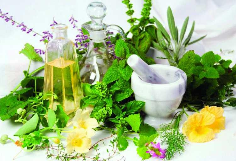 Фитостерины: свойства и роль в организме | food and health