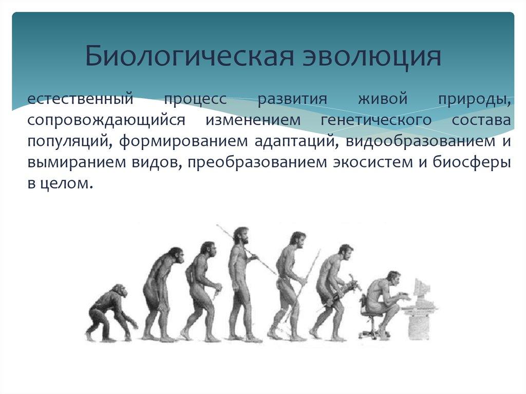 Эволюция живой природы. эволюционная теория. движущие силы эволюции. | егэ по биологии
