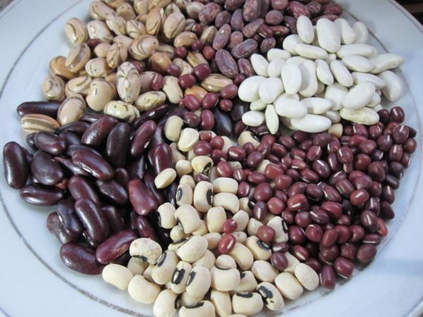 Фасоль – это овощ или нет? | пища это лекарство