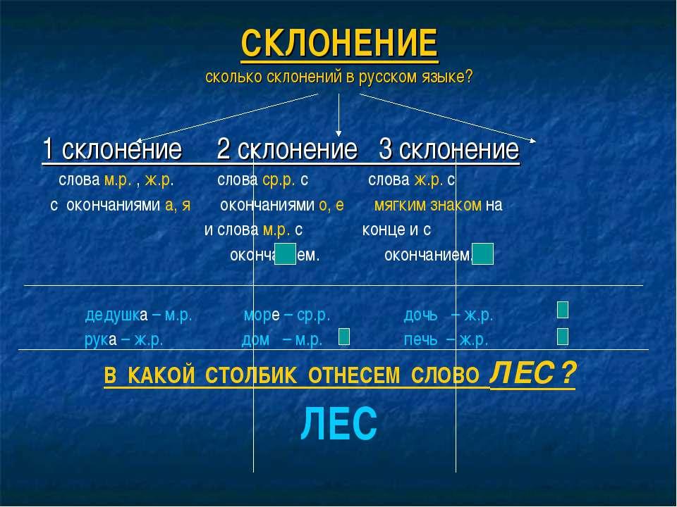 Склонение имен существительных в русском языке