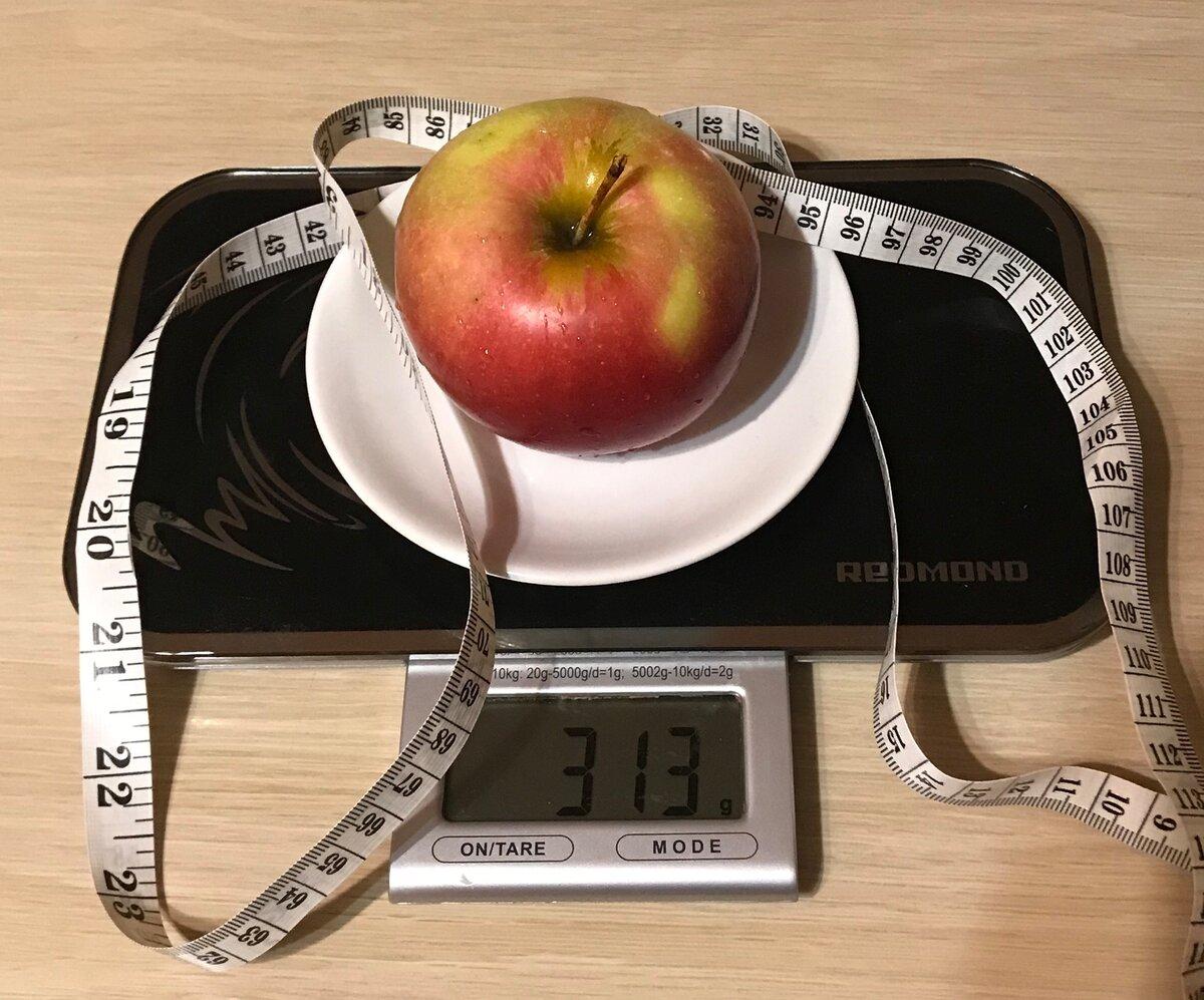 Medaboutme - калории: понятие калорийности, расчет калорий, количество калорий в