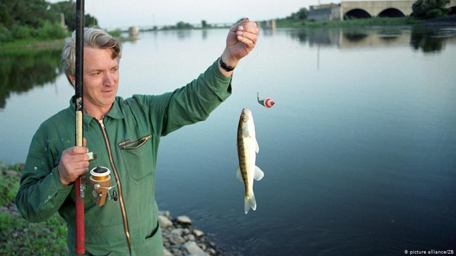 Лицензия на добычу рыбы и морепродуктов - документы, сроки, ответственность