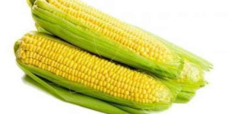 Карта кукуруза от евросети, отзывы, как получить и пополнить, условия