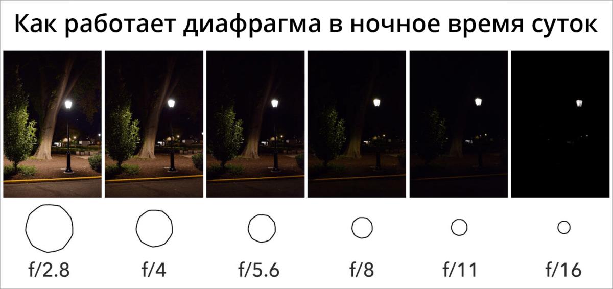 Эффективное использование настроек iso в фотоаппарате