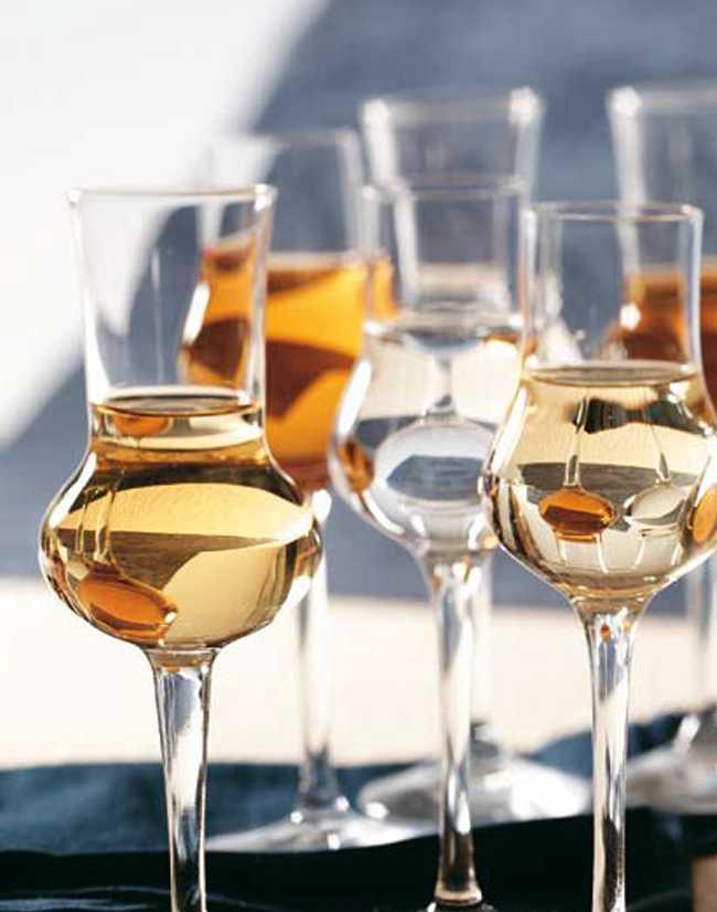 Граппа: что это такое, как и с чем пить напиток, отличия от чачи, сколько градусов и из чего делают итальянскую виноградную водку