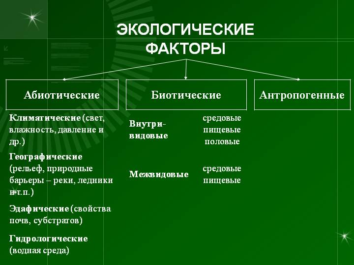 Лекция № 4. тема: экологические факторы   контент-платформа pandia.ru