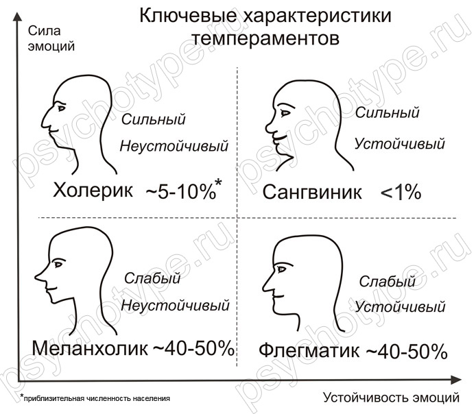 Холерик – тип, темперамент, описание личности