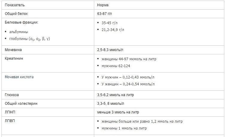 Общий белок крови – что это такое, таблицы норм по возрасту у женщин и мужчин