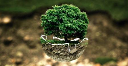 Экологический кризис и его характеристика