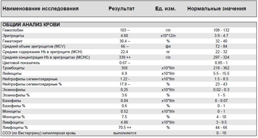 Анализ крови на plt: что это такое, норма, расшифровка, где сделать исследование на platelets