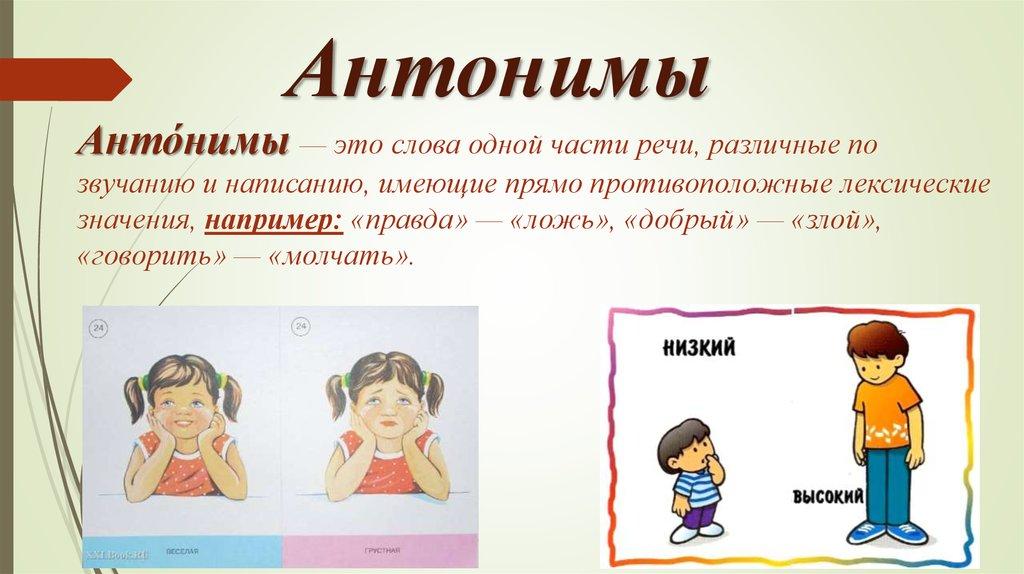 Что такое синонимы и антонимы в русском языке? какие они бывают?