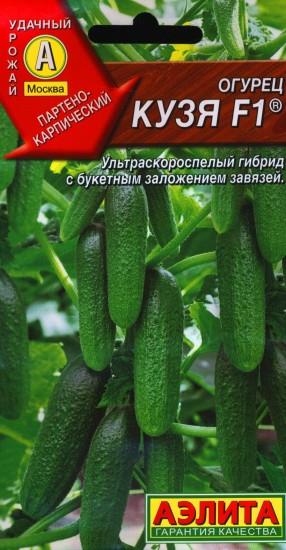 Популярные сорта огурцов корнишонов