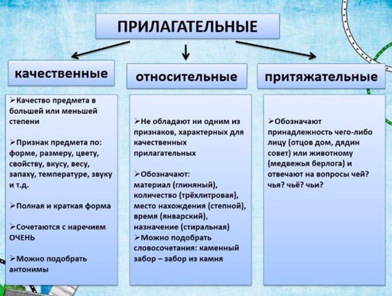 Что такое прилагательное, на какие вопросы отвечает, постоянные и непостоянные признаки, разряды относителльные и притяжательные прилагательные, общее грамматическое значение | tvercult.ru