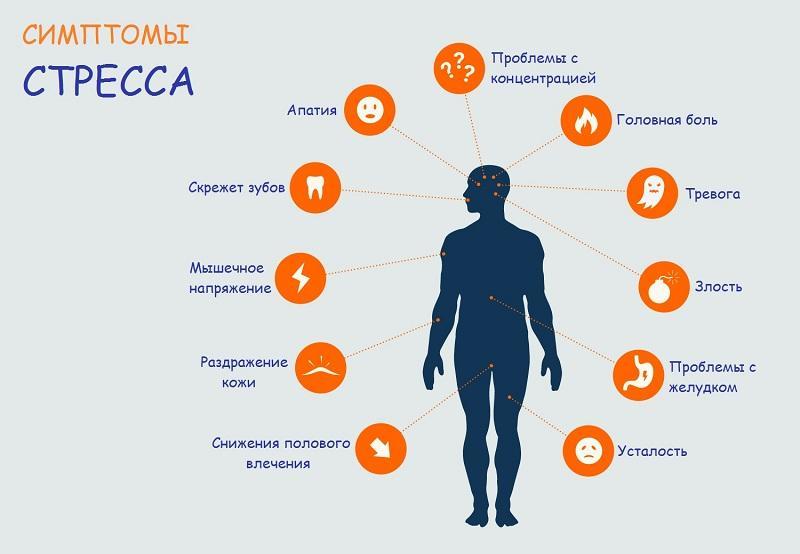 Критерии оценки влияния стресса на здоровье человека - вашпсихолог