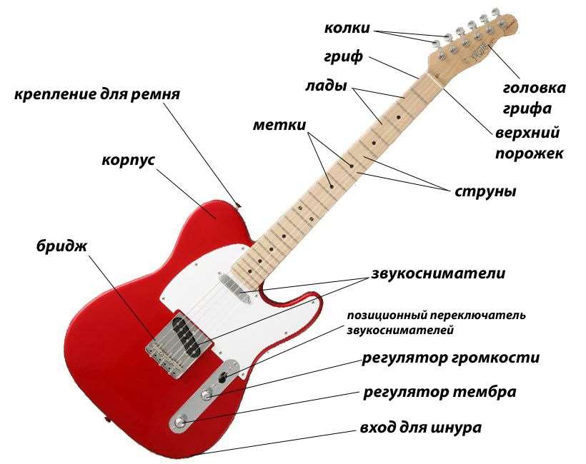 Виды гитар и их различия