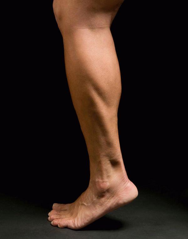 Нога человека — википедия. что такое нога человека