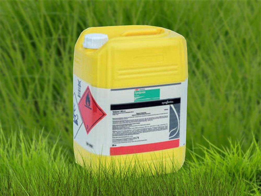 Пестициды: чем опасны и полезны в сельском хозяйстве
