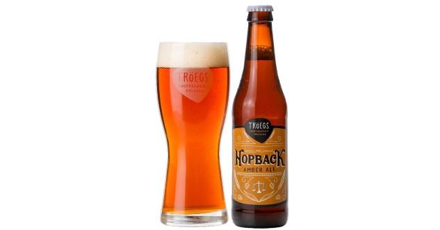 Что такое ирландский эль в чем отличия от пива?   bezprivychek.ru