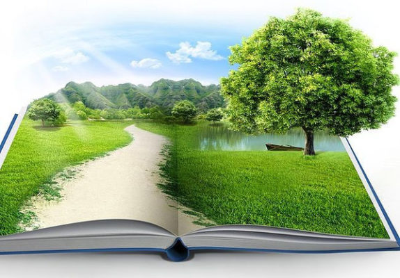 Что такое экологическое право как наука и учебная дисциплина?