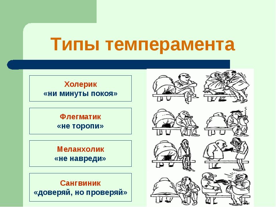 Виды темпераментов, влияние на формирование характера