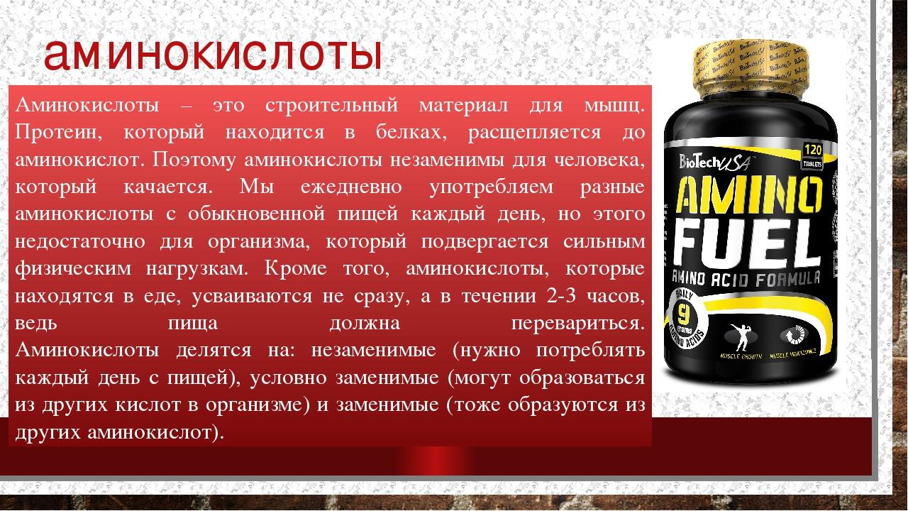Функции аминокислот в организме человека