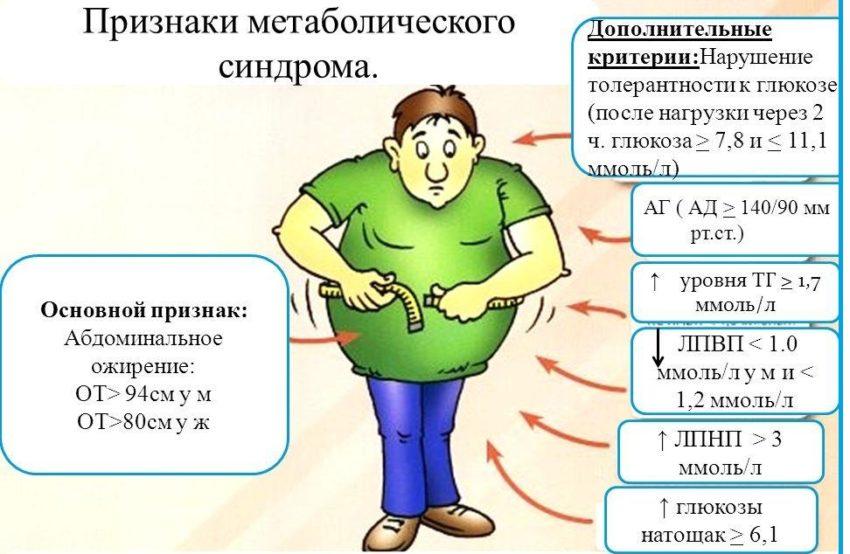 Метаболический синдром – симптомы, диета, рекомендации