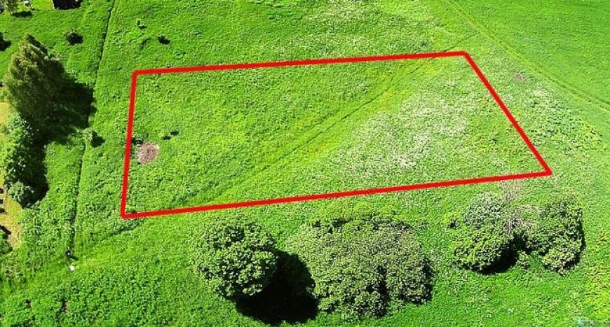Земельный участок, земля. соотношение, отличия понятий, виды земельных участков