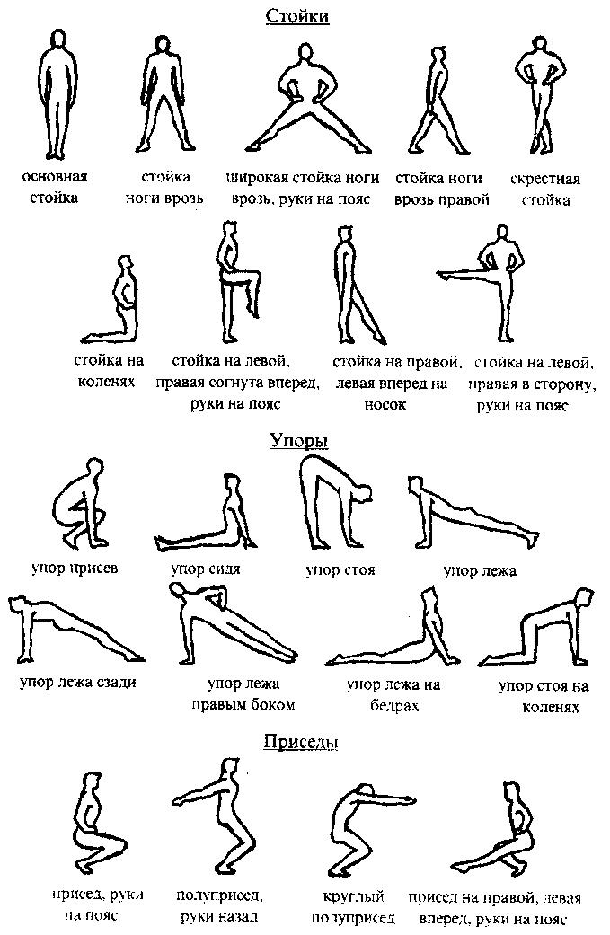 Общеразвивающие упражнения – базовые средства оздоровительной гимнастики