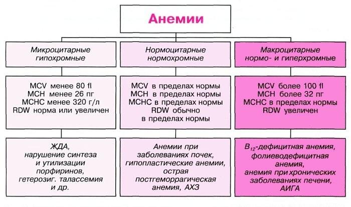 Анемия: что это такое? симптомы, причины и лечение