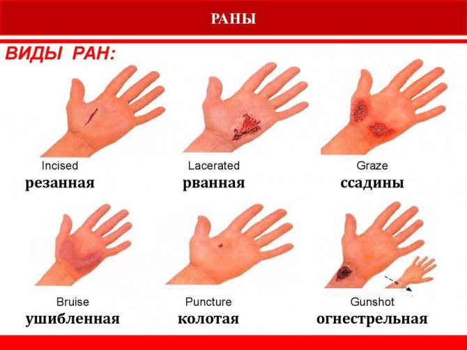 Ран — российская газета