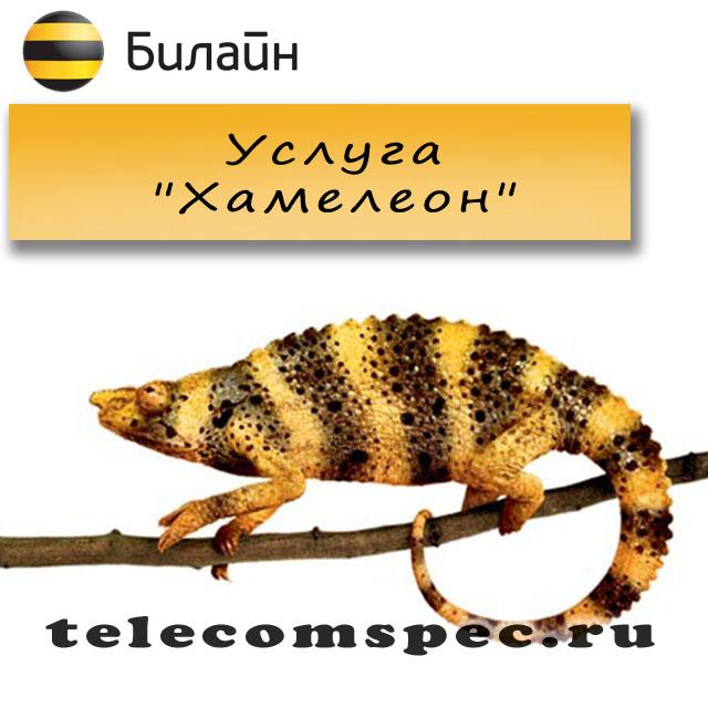 Услуга «хамелеон» билайн: подключение, отключение