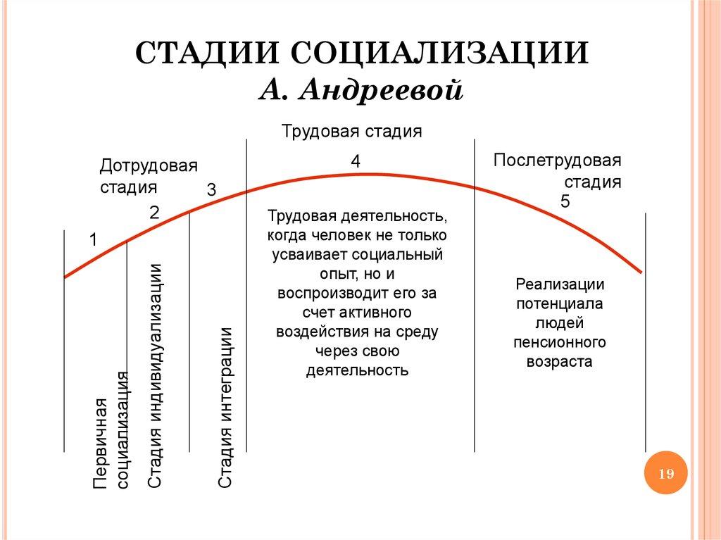 Социализация